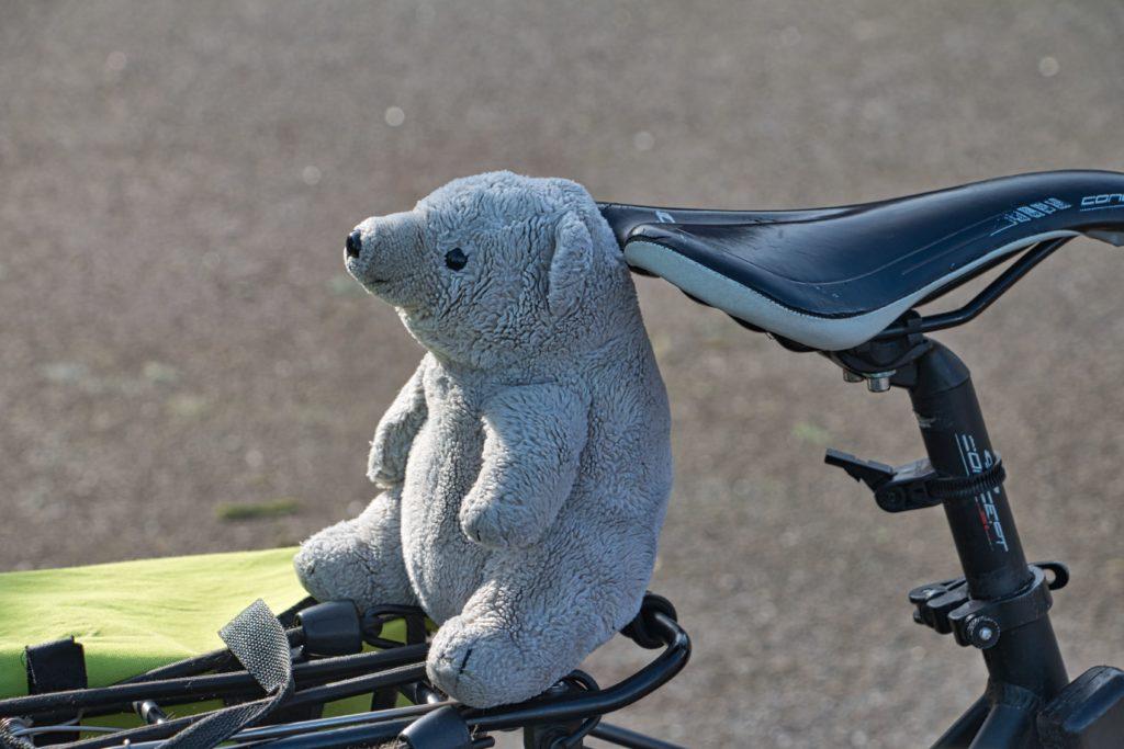 IJsbeertje op fiets